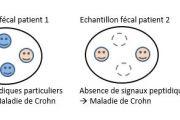 SALI' VET : kits de diagnostic salivaire et sérologique de la toxoplasmose