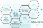 INRAtion v5 : le nouveau logiciel de rationnement pour l'alimentation des ruminants