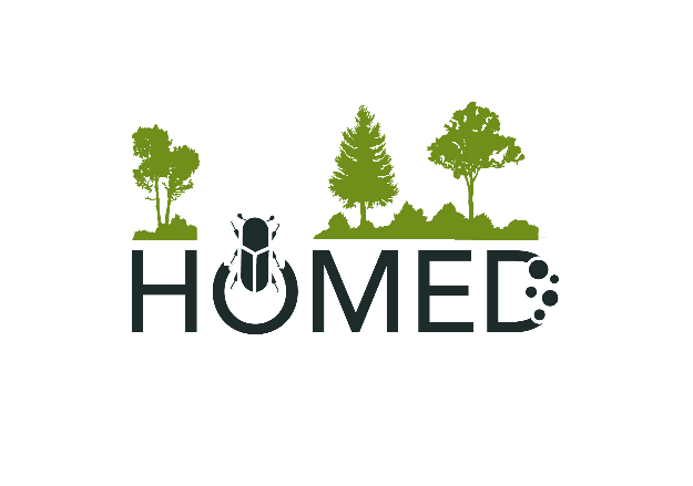 homed logo